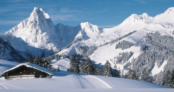 Luxury ski area Gstaad & Elite escorts Switzerland
