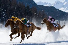 Elite escort service St. Moritz and the White Turf